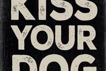 I <3 Dog