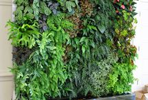 garden art plants