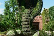 Garden Art & Botanical Gardens / by Deborah Harvey