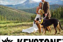 Far-Future Wedding..