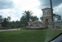 Davenport, Florida - Calabay Parc Area