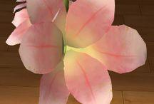 Frezja / Rodzaj bylin należący do rodziny kosaćcowatych.Są uprawiane w wielu krajach świata jako rośliny ozdobne, w Polsce ze względu na klimat, głównie w szklarniach na kwiat cięty.
