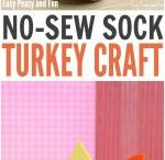 Sock Turkey (w/rice)