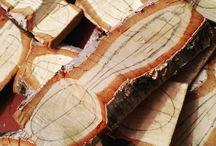 Bjørketrær/skjeer