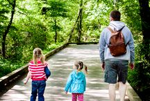 Family bonding time / Places to visit and things to do with the family