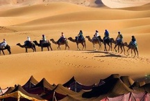 Desert Song / The call of the desert and an abiding memory of the Fry's Turkish Delight Adverts !