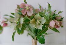 {blooms} / Floral design