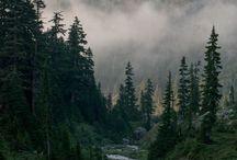 Thru-Hiking: PCT