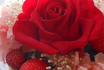 ♫♪ Fores...♫♪.... Flowers ♫♪ / ♫♪ Lindas Flores e rosas......Beautiful flowers and roses ♫♪