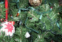 Christmas  / My favorite time of year. My favorite holiday. / by Donna Rucker Godfrey