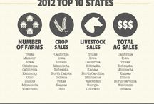 2012 USDA Ag Census