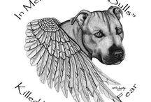 pitbull tattoo's