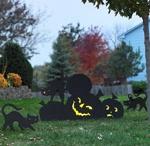 Halloween Ideas / by Melissa Schmitz