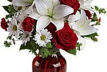 luxurious flowers / This is a Good Collection of Colorful Flowers.