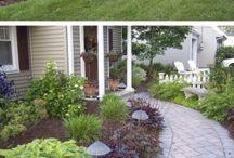Garten / Pflanzen