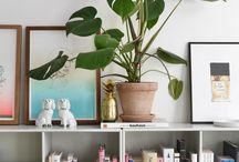 Grønne planter#inspiration