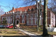 Czarny Bór - Pałac