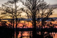 Pictures of the Park / by Lake Blackshear Resort