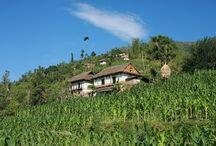 Mountain House in Nepal / trekkingmart.com
