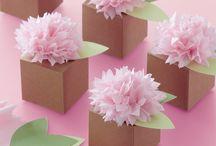 Λουλούδι νύφη