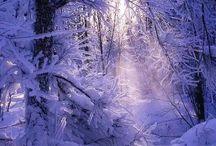 Winter Wonderland / Places I've enjoy in My Lifetime