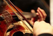 Brunch violinist