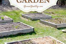 Life in the Wild / Gardening