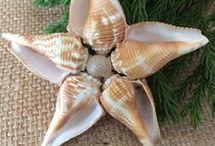 Shell crafts / Christmas