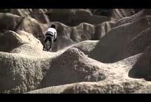 Ciclismo, BMX y BTT