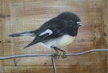 New Zealand Bird Paintings / Acrylic paintings of beautiful New Zealand Birds by Jodie McLay