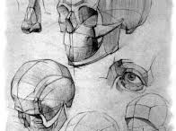 Ref - Human - Anatomy - Head