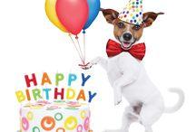 jack russell verjaardag