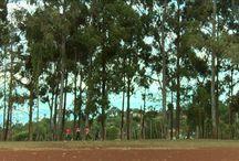Running Kenyan style - Kenyan running / World's best distance runners come for decades from Kenya. What makes Kenyans so fast? All about #KenyanRunning #Running #KenyanStyle