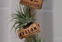 kasvit ja vihersisustaminen