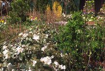 Northwest Flower & Garden Show 215