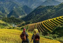 Azië / Reis door Azië en bezoek meerdere landen. Ontdek de verschillen en proef vooral het heerlijke Aziatische eten. Vind jouw reis naar Azië op Vakantieboulevard.nl