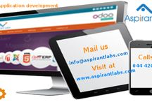 Custom Application development / Manage and execute your business processes a lot better by simplistic web interfaces.