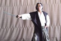 Qi Gong Japonais / Méthode Oaki, art martial interne, travail sur l'énergie