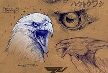 aigle animaux