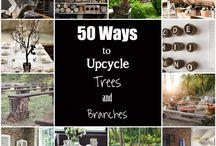 Branch & Log Creations