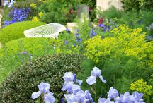 Zahrada kosatce