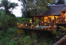 Three Cities Madikwe River Lodge  / by Three Cities Exceptional Hotels