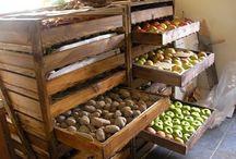 veggie fruits storage