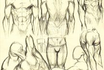 Body Anatomy
