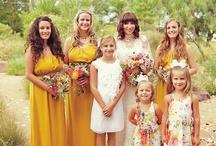 Weddings / Wedding dresses, rings, flowers, decorations, ceremonies
