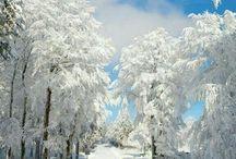 Zima...tél.