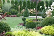 Ogród bukszpanowy