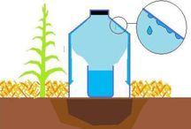 Irrigateur solaire