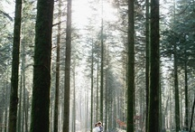 Goin' to the Chapel - Wedding Photography  / by Charlotte Flax