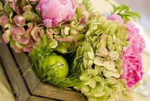 INSPIRATION: Spring Flowers / The best of spring